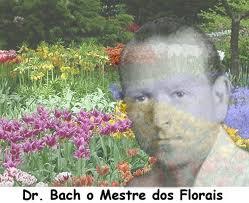 ansiedad, flores de bach